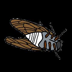 Sentimental Cicada Sticker