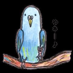 Chattering parakeet