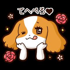 Cavalier's Love chan!