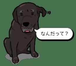 Doc the Labrador Retriever sticker #7364451