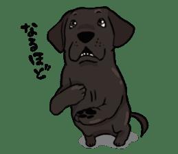 Doc the Labrador Retriever sticker #7364452