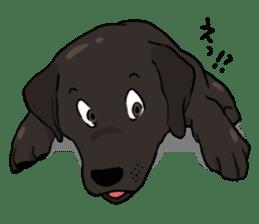 Doc the Labrador Retriever sticker #7364454