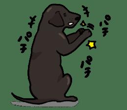 Doc the Labrador Retriever sticker #7364456