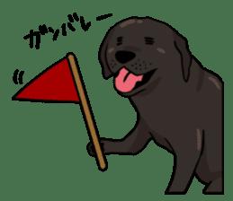 Doc the Labrador Retriever sticker #7364457