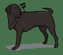 Doc the Labrador Retriever sticker #7364459