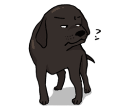 Doc the Labrador Retriever sticker #7364464