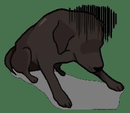 Doc the Labrador Retriever sticker #7364471