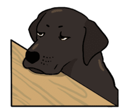 Doc the Labrador Retriever sticker #7364472