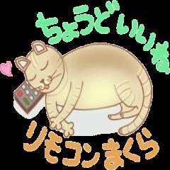 Cat true story 2 (Japanese)