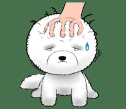 """Bichon Frise """"Noobie"""" Part II sticker #7424264"""