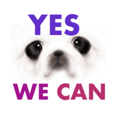 We Love Pekingese!! (English Version) sticker #7434133