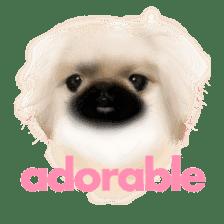We Love Pekingese!! (English Version) sticker #7434144