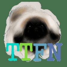 We Love Pekingese!! (English Version) sticker #7434159