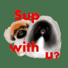 We Love Pekingese!! (English Version) sticker #7434162