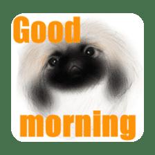 We Love Pekingese!! (English Version) sticker #7434167
