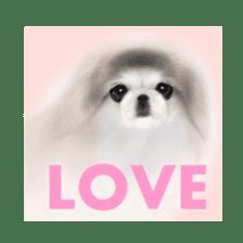 We Love Pekingese!! (English Version) sticker #7434171