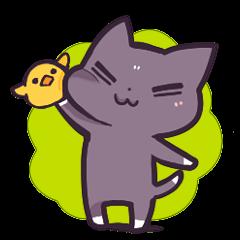 Cat Cat DAYS