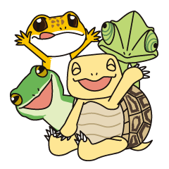 Tortoises, frogs, chameleons, etc.