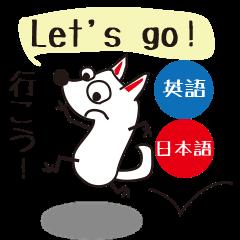 Bilingual dog[English and Japanese]