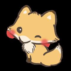 mild-Fox