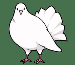 Cute Pigeon2 sticker #7616020