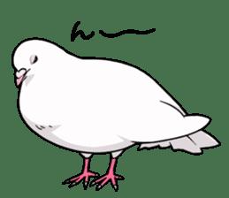 Cute Pigeon2 sticker #7616033