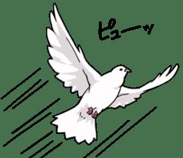 Cute Pigeon2 sticker #7616051