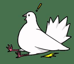 Cute Pigeon2 sticker #7616054