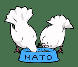 Cute Pigeon2 sticker #7616056