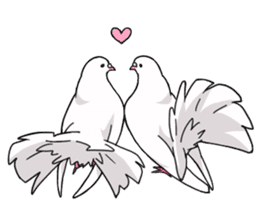 Cute Pigeon2 sticker #7616057