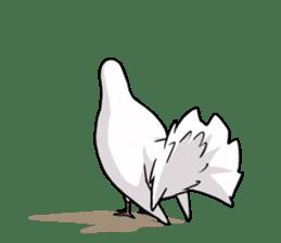 Cute Pigeon2 sticker #7616059