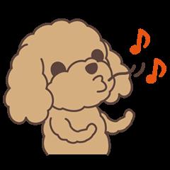 Saucy Poodle