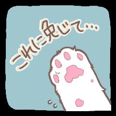 Cat full stickers for cat lover