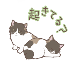 Cat full stickers for cat lover sticker #7651108
