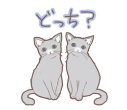 Cat full stickers for cat lover sticker #7651110