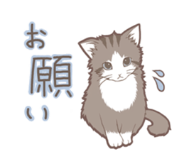Cat full stickers for cat lover sticker #7651112
