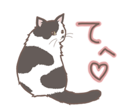 Cat full stickers for cat lover sticker #7651119