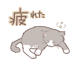 Cat full stickers for cat lover sticker #7651122