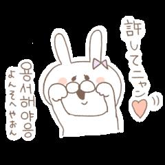 marshmallow rabbit Korean and Japanese