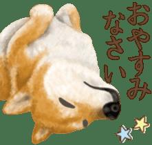 As expected! Shiba Inu sticker #7672141