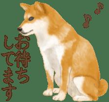 As expected! Shiba Inu sticker #7672144