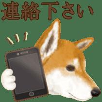 As expected! Shiba Inu sticker #7672149