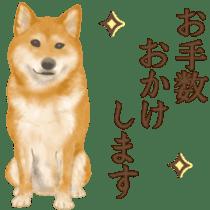 As expected! Shiba Inu sticker #7672158