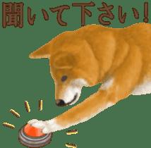 As expected! Shiba Inu sticker #7672163