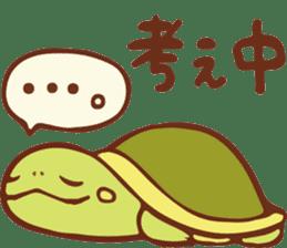 Because turtle sticker #7788950