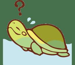 Because turtle sticker #7788954