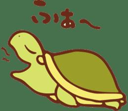 Because turtle sticker #7788959