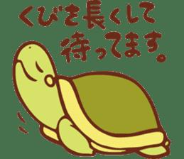 Because turtle sticker #7788963