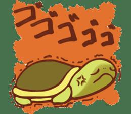 Because turtle sticker #7788965