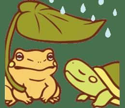 Because turtle sticker #7788978
